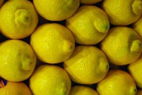 precio limones